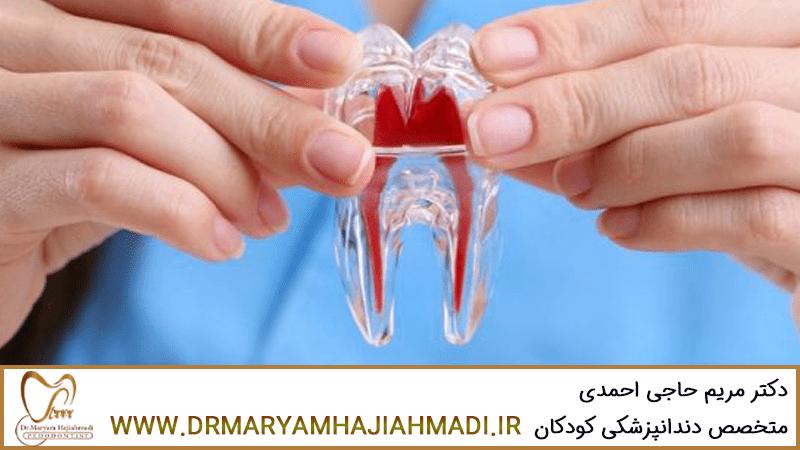 آشنایی با سلول های بنیادی دندان های شیری